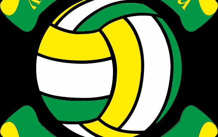 Начинается Открытый Чемпионат Лиги волейбола Куркино!