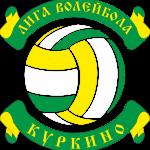 Открытое первенство микрорайонов Куркино по волейболу